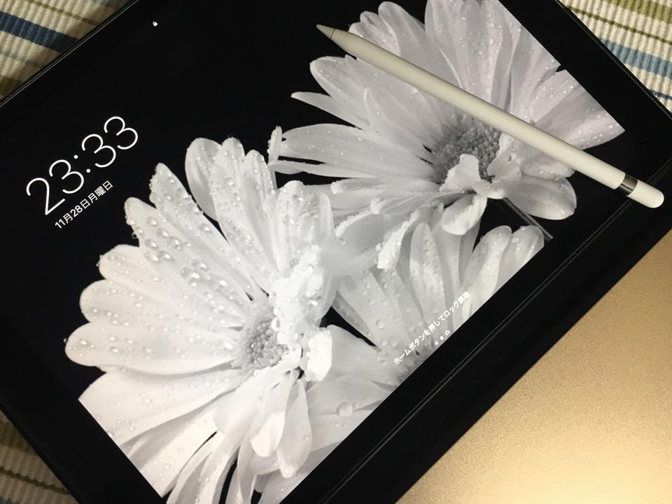 iPad Pro12インチ